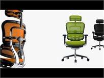 כיסא עבודה ארגונומי ואורטופדי פרימיום Ergohuman Comfort