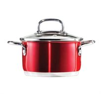"""שמח במטבח! סיר נירוסטה 24 ס""""מ מסדרת הסירים Arcosteel Red Metallic"""