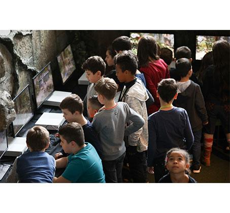 כרטיסים לתערוכת הלגו הבינלאומית 26.07-31.08 - היכל טוטו חולון - תמונה 4