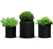 סט 3 עציצים מהודרים בטקסטורת ראטן בגדלים שונים KETER