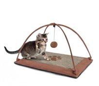 משחק לחתול אוניבסיטה
